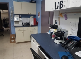 Laboratory -We perform many in-house laboratory diagnostics, with most results available the same day.