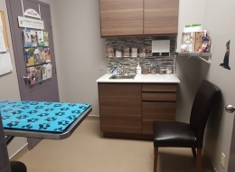 Exam Room 2 -This exam room is geared more toward cats, but can accommodate both species.