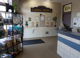 Reception -We have hand-pained murals on the wall to add warmth to our waiting area.