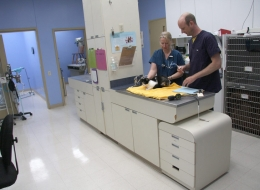 Treatment Area -Our treatment area is the heart of our clinic. (It is currently undergoing renovations - new photos will be coming soon).
